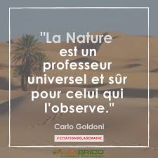 Citation De Carlo Goldoni Citation N9 Blog Alsabrico