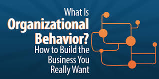What Is Organizational Behavior What Is Organizational Behavior How To Build The Business
