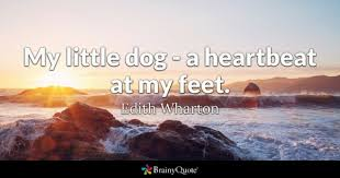 Dog Best Friend Quotes Magnificent Dog Quotes BrainyQuote