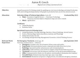 Create Resume For Free Unique How To Create Resume This Is A Resumes Creating Online Visual From