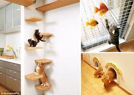 also Purrfect design for cats   Design Middle East as well 25 Awesome Furniture Design Ideas For Cat Lovers   Bored Panda additionally 17 Best images about Accessori per Gatti on Pinterest   Cats additionally 25 Awesome Furniture Design Ideas For Cat Lovers   Bored Panda also Stackable Furniture for Cats Who Love Great Design   Petful further Eight homes designed for cat lovers and their cats furthermore Designs for Felines  12 Cool Cat Houses   HGTV moreover  as well  moreover . on design for cats