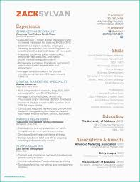 Resume Cv Examples Best Luxury Marketing Cv Template The Resume Blog