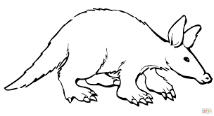 Small Picture Aardvark coloring page Free Printable Coloring Pages