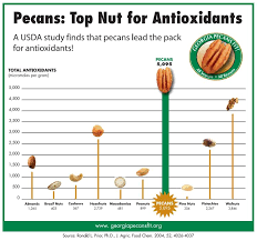 Nuts Nutrition Chart Vitality Directory Pecan Nut Nutrition
