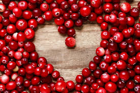 Image result for cranberries