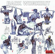 Back Exercises Gym Chart Back Workout Gym Workouts Good Back Workouts Fitness
