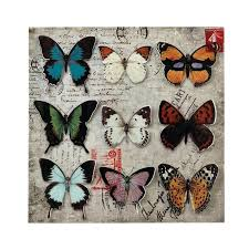 and butterfly collage wall art stock photo butterfly collage 3 d metal wall art nature inspired on nature inspired metal wall art with and butterfly collage wall art stock photo butterfly collage 3 d