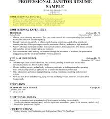 Resume Profile Summary Samples