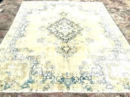 D Neutral Area Rugs Color Extraordinary  Chic