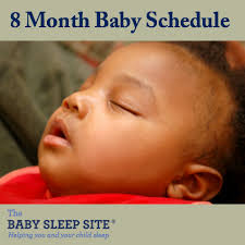 8 Month Old Feeding Chart 8 Month Old Baby Schedule Sample Schedules The Baby