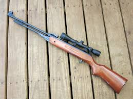 177 Air Rifle Trajectory Chart 10 Best Pellet Guns For Hunting In 2019 Complete Guide