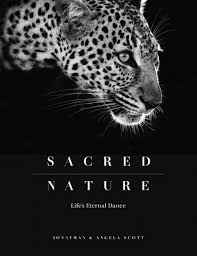 from the makers of the award winning television series big cat diary sacred nature is a new and very poignant pictorial coffee table book which stands