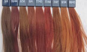 Loreal Hair Color Shades Chart India Best Picture Of Chart