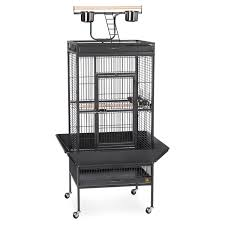 Prevue Pet Products Select Wrought Iron Cockatiel Cage 3151 | Hayneedle