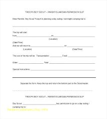 Consent Form Template For Children Fresh Free Child Travel Best ...