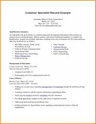 problem solving template - 10 resume summary template top resume templates