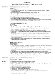Relationship Resume Examples Relationship Analyst Resume Samples Velvet Jobs 8
