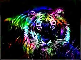 rainbow animal wallpaper.  Wallpaper Colorful Fractal Tiger Rainbow Animal Cats HD Wallpaper And Rainbow Animal A