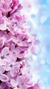 Pink Cute Wallpapers For Your Phone ...