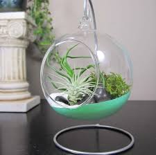 Mini Hanging Glass Terrarium Ideas With Metal Terrarium Stand