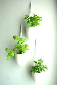 wall flower holders plant pots indoor mounted nz plan