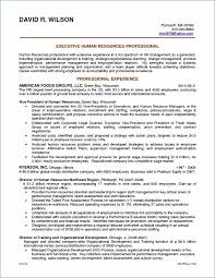 Resume Examples Professional Summary Publicassets Us