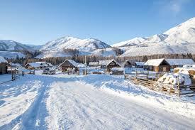 Winter Snow Scenes In Hemu Village Xinjiang Photo Image_picture Free