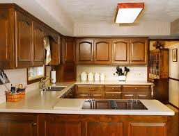 Amish Cabinet Doors Kitchen Amish Kitchen Cabinets Exquisite Also Amish Kitchen