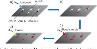 Paper Reports Figure 2 From Paper Based Blood Typing Device That Reports