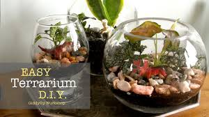 how to make your own terrarium. Perfect How Intended How To Make Your Own Terrarium