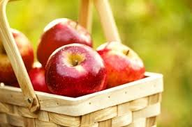 green and red apples in basket. fresh tasty red apples in wooden basket on green grass and a