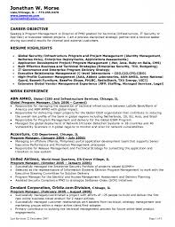 Resume For Job Examples And Samples Mr Sample New Objectives In