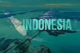 The Carbon Brief Profile: Indonesia