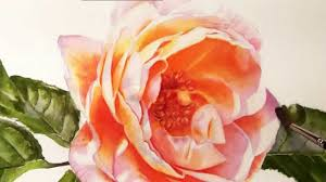 how to paint realistic stunning flowers watercolor dvd and lessons you