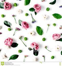 Behang Textuur Roze Rozen En Witte Bloemen Op Witte Achtergrond