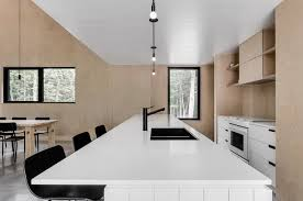 this kitchen is an exercise in light and dark which echoes the home s dark exterior