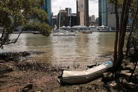 Why Is The Brisbane River Brown And Not Blue Curious