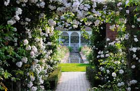 austin garden homes. Austin Garden Homes Thraam Simple House
