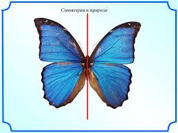 центральная симметрия в пространстве презентация по геометрии