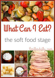 soft food se bariatric surgery recipes soft foods se and food
