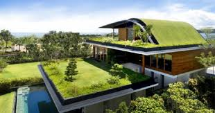 Philippines house roof deck roof garden Manila About Green Roofs Elliotts About Green Roofs Elliotts Hampshires Leading Independent