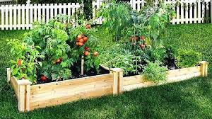 vegetable garden beds vegetable garden bed design ideas