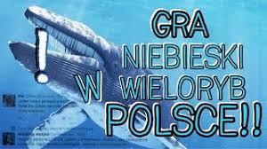 Znalezione obrazy dla zapytania niebieski wieloryb GRA