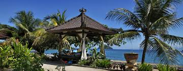 how about a fresh coconut while lounging in a gazebo on a secluded beach when