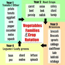Crop Rotation Chart Vegetable Gardening Crop Rotation Guide Garden Design Ideas