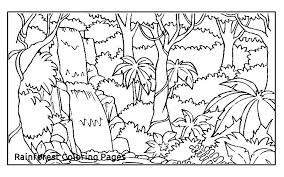 Rainforest Animals Coloring Pages Amazon Coloring Pages By