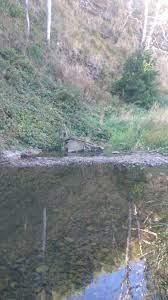 1685 Traralgon Creek Rd, Koornalla VIC ...