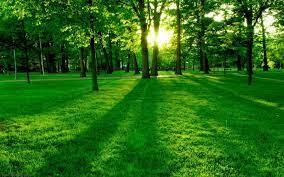 Nature Hintergrundbilder Desktop Best ...