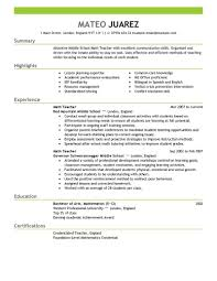Professional It Resume Samples Best Teacher Resume Example Cover