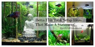 Decorative Betta Fish Bowls Betta Fish Tank Setup Ideas That Make A Statement Spiffy Pet 35